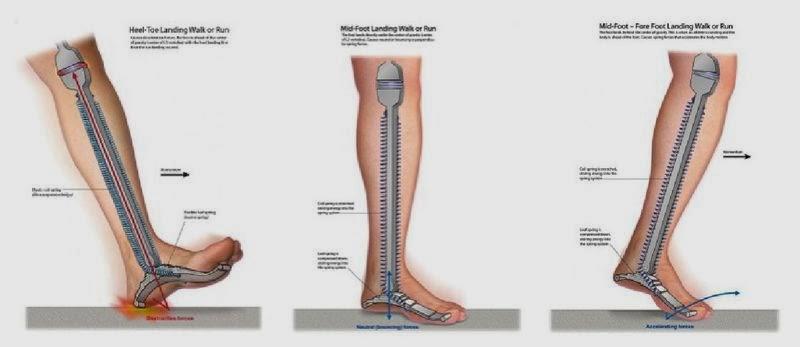 a scăzut piciorul muscular