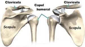 problemă articulară cum să scapi de artroza articulației umărului