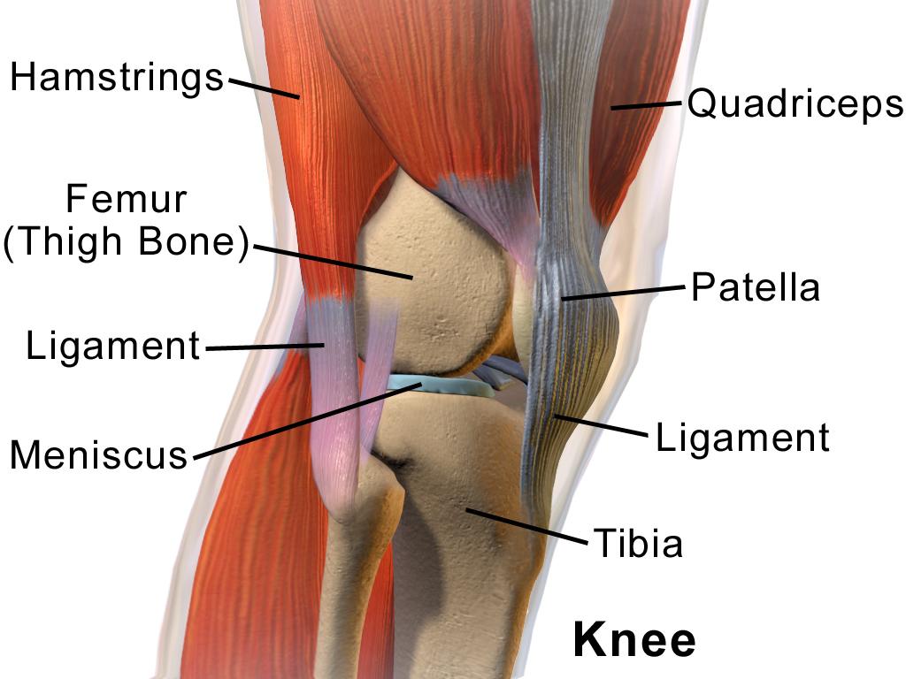ceea ce face rănile genunchilor a dureri articulare