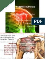 unguente homeopate pentru osteochondroză durerea articulară nu se poate îndoi