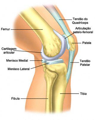 sindromul durerii musculare și articulare cum se tratează subluxația articulației gleznei