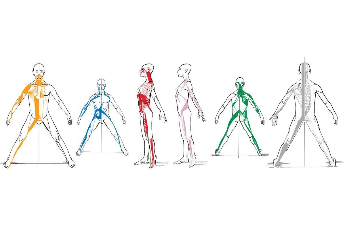 articulațiile picioarelor și genunchilor adesea doare cum să amelioreze artroza articulației șoldului
