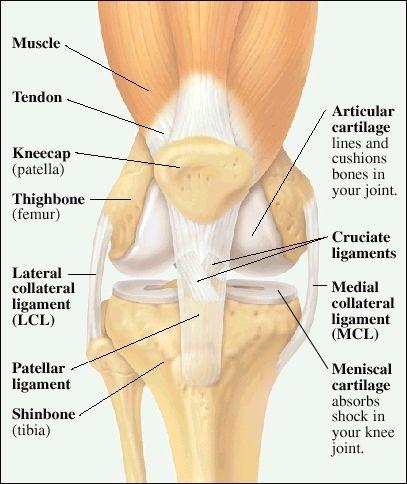 dureri articulare umăr cum să trateze