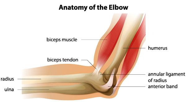 durere după fractura articulației cotului