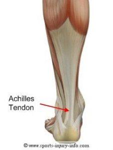 preparate condroprotectoare pentru prețurile articulațiilor când dureri articulare