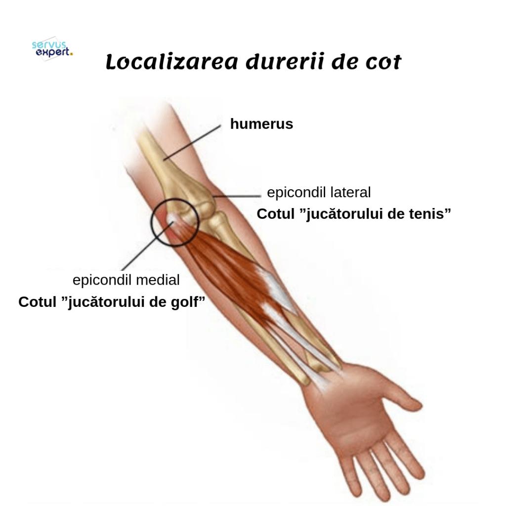 În încheietura și durere Durere în articulațiile cotului mâinilor cu exerciții fizice