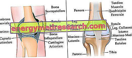 genunchiul zboară dintr-o articulație vis pentru tratamentul artrozei